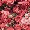 shop_beauty